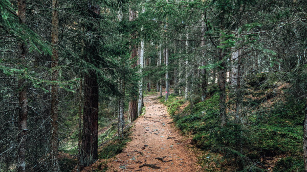 Finding local hiking trails